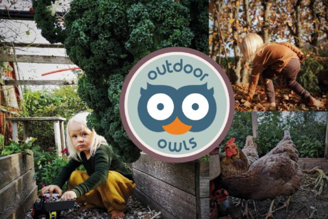 Outdoor owls - visuel idenetitet